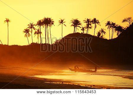Orange Sunset Backlight