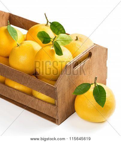 Wooden Box Full Of Grapefruits