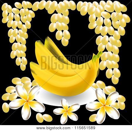 banana, plumeria, frangipani, grape fruit vector flowers. tropical  still life
