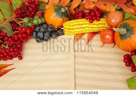 Autumn harvest of fruits and berries