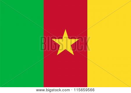 Standard Proportions For Cameroon Flag