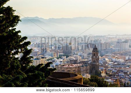 View of Malaga Cathedral and cityscape