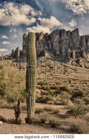 An image of the Superstition desert in Arizona shows the rugged detail of a dry wilderness with a saguaro cactus