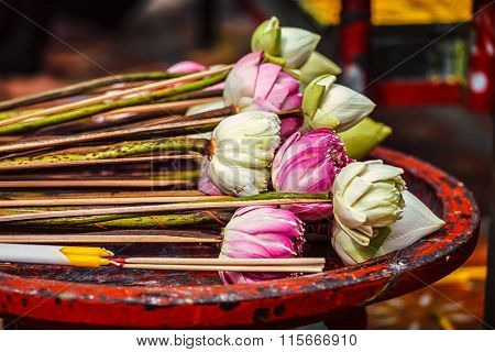 Lotus flowers used as offering in Wat Phra That Doi Suthep Buddhist temple, Chiang Mai, Thailand