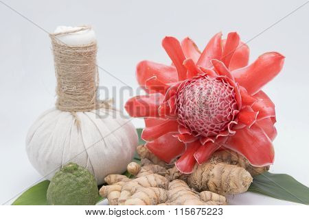Natural Spa Ingredients . The Herbal Compress Ball And Torch Ginger
