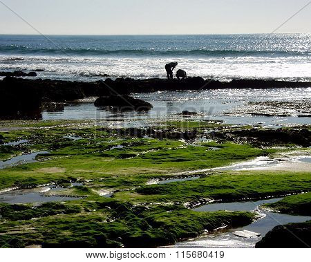 Atlantic coast of Estoril near Lisbon, Portugal