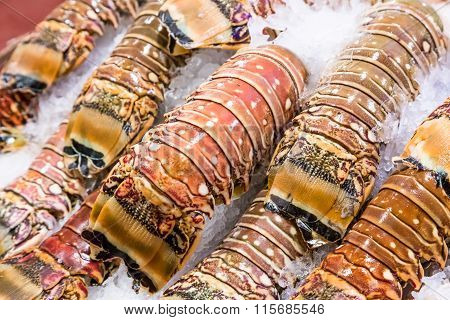 Closeup Fresh Lobster Tails
