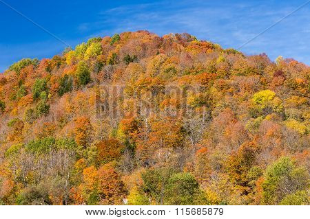 Colorful Autumn Foliage Mountain In Vermont.