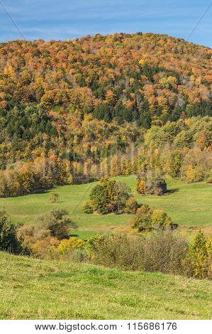 Falls Foliage And Little Hut In Vermont Countryside