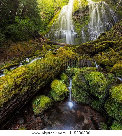 Beautiful Proxy Falls In Mist, Oregon.