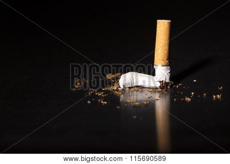 Closeup Broken Cigarette Stop Smoking