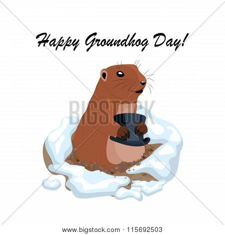 Vector illustration with cute groundhog holding black hat out of a hole.