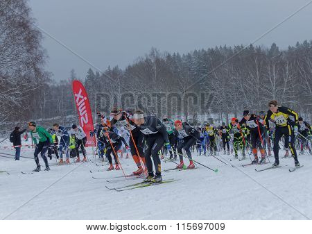 STOCKHOLM - JAN 24 2016: Side view of large group of fighting colorful cross country skiers at the Stockholm Ski Marathon event January 24 2016 in Stockholm Sweden