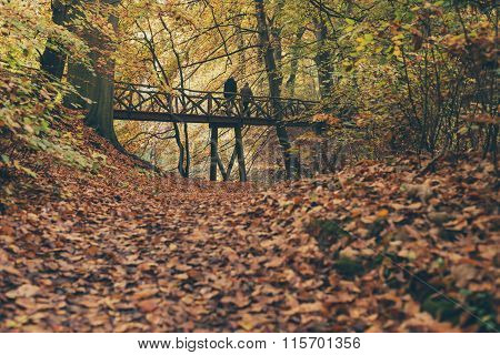 Couple Walking Over Wooden Bridge In Autumn Forest.
