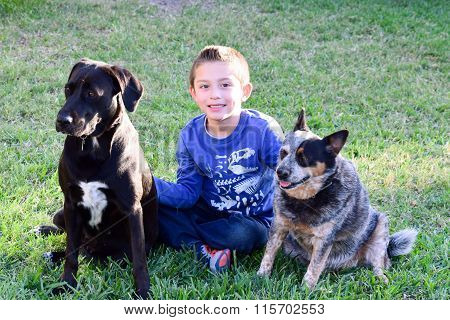happy little  boy with his dogs