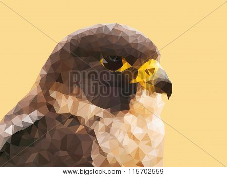 Falcon made from triangles