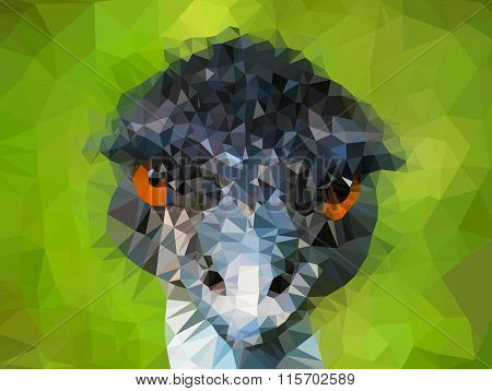 Emu head made from triangles