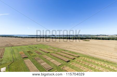 Agricultural Trial Fields In Mecklenburg, Germany