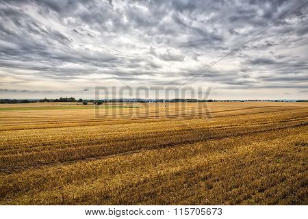 Hdr Landscape With Harvested Fields In Summer