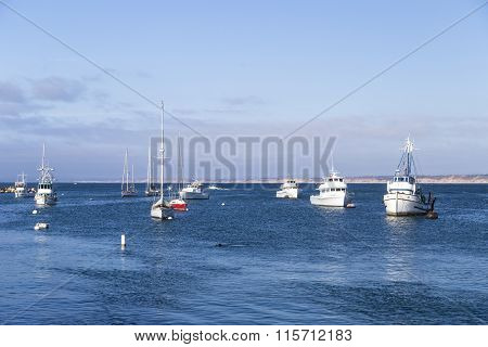 Monterey, California - 4 September 2014: Moored And Anchored Sailboats, Yachts, And Speed Boats In M