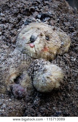 Teddy Bear Buried In A Pile Of Ash