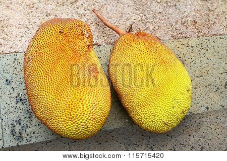 Fresh The Jackfruit (Artocarpus heterophyllus) is a good source of the antioxidant vitamin C. The fruit is also rich in vitamin B6, potassium, calcium, and iron.