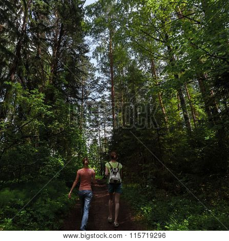 Two ladies hikers walking in the spring lush forest