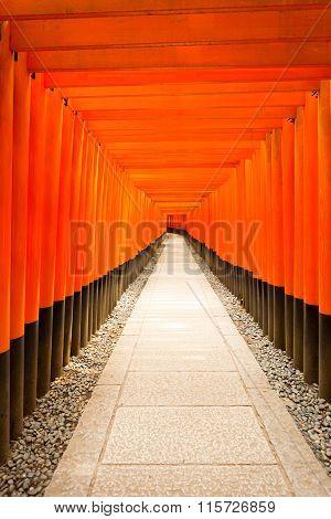Fushimi Inari Shrine Nobody Centered Middle Torii