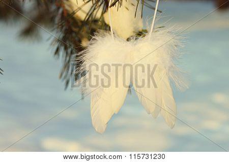 Angel's wings on tree
