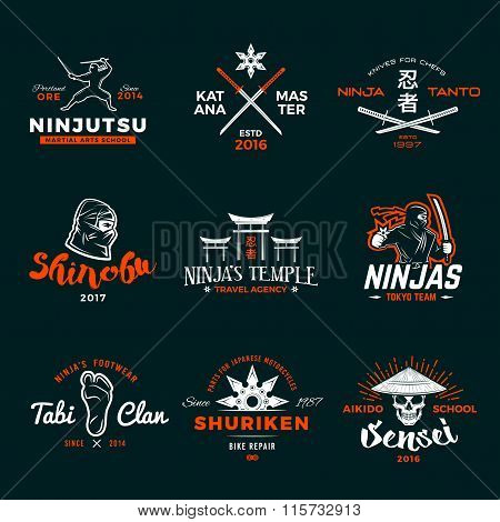 Set of Japan Ninja Logo. Ninjato sword insignia design. Vintage shuriken badge. Mixed martial art to
