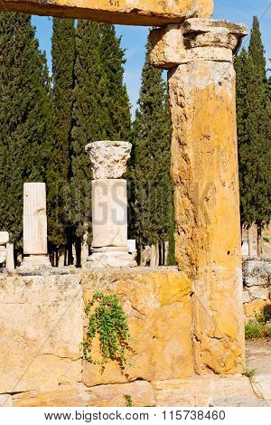 And     Temple History Pamukkale    Turkey The Column