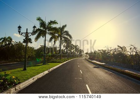 Pathway With Tropical Nature Toward Luxury Resort In Punta Cana, Dominican Republic