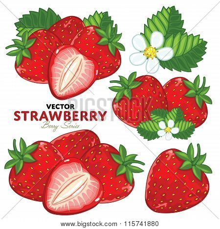 Strawberry Set, Vector.
