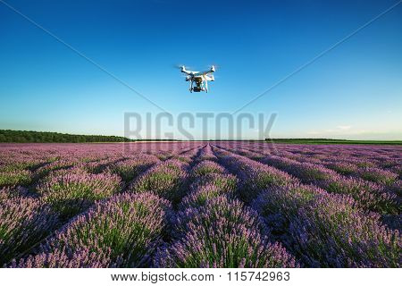 Varna, Bulgaria - June 22, 2015: Flying Drone above lavender field