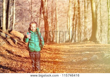 little boy with backpack trekking in autumn forest