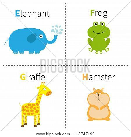 Letter E F G H Elephant Frog Giraffe Hamster Zoo Alphabet. English Abc With Animals Education Cards