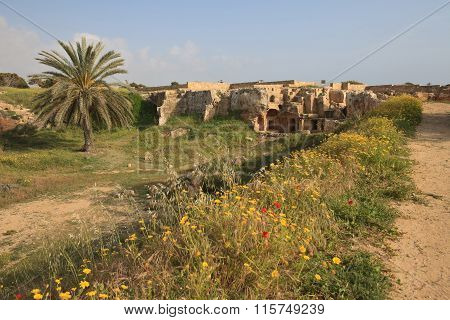 The Road To The Tombs Of The Kings In Paphos, Cyprus