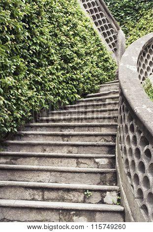 staircase in a garden