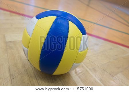The tailor volleyball in the school gym