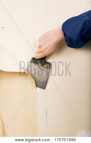renovation - removal of old wallpapers with spatula