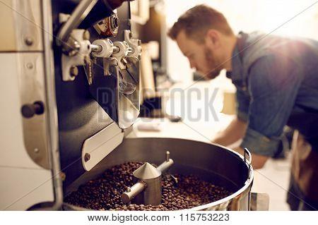 Freshly roasted coffee beans in a modern machine