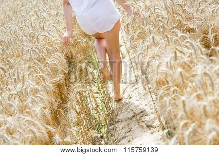 Girl walking barefoot on a field of rye