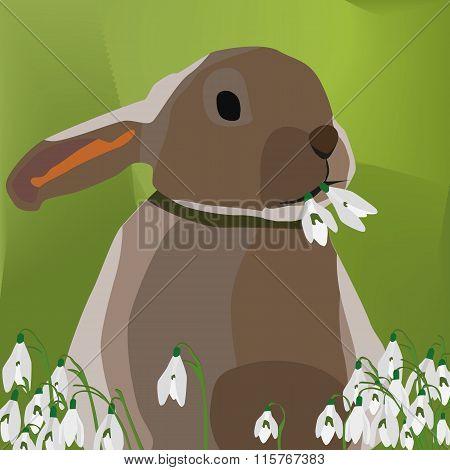 Illustration Vector Graphic Rabbit Eating Snowdrop