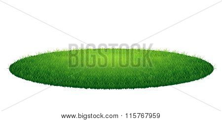 Green grass round meadow