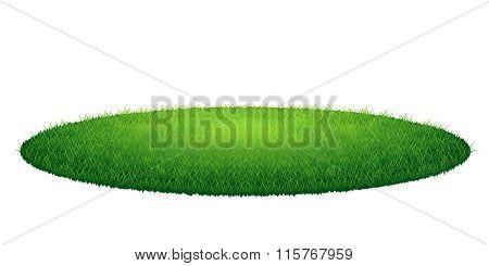 Green grass round meadow