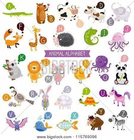 Cute english illustrated zoo alphabet with cute cartoon animals isolated on white background.Vecto
