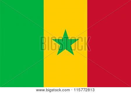 Standard Proportions For Senegal Flag