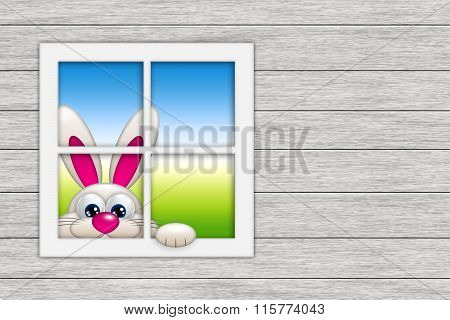 Easter Bunny Looking By The Window