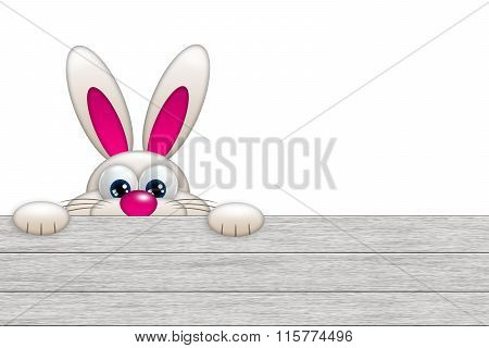 Easter Bunny Looking By The Wooden Fence
