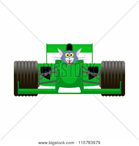 Cat Driving A Green Racing Bolide Car